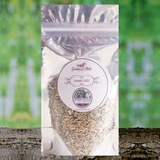 Fennel Seeds 1oz. Dry Seeds